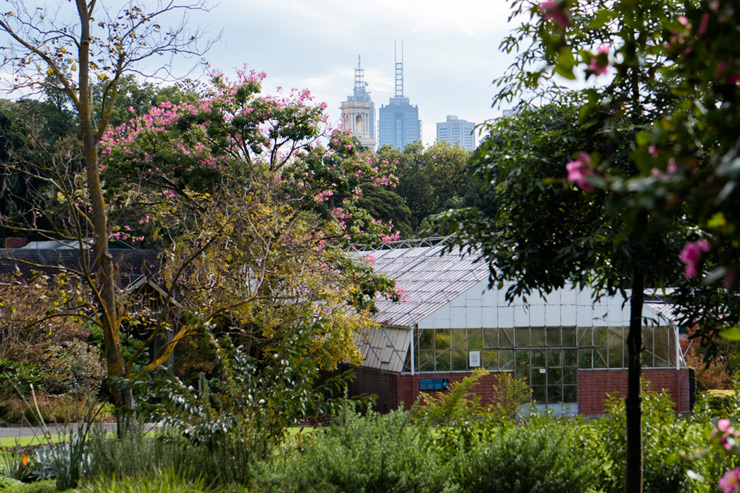 Melbourne Botanic Garden Shed