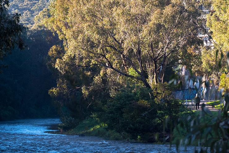 Dight Falls Trail River Jogging