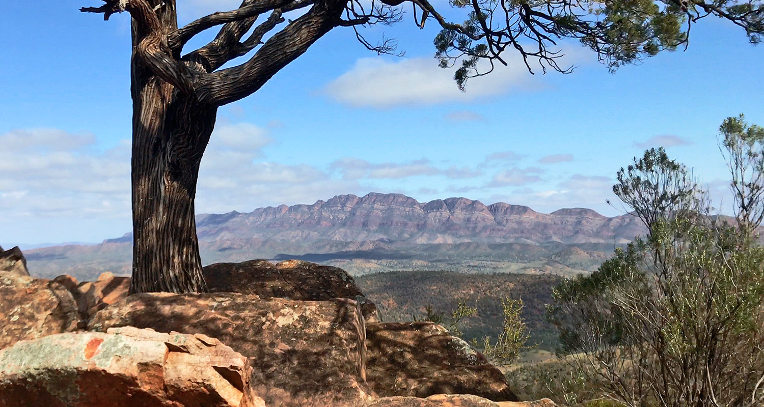 Day 4 Bridle Gap Lookout