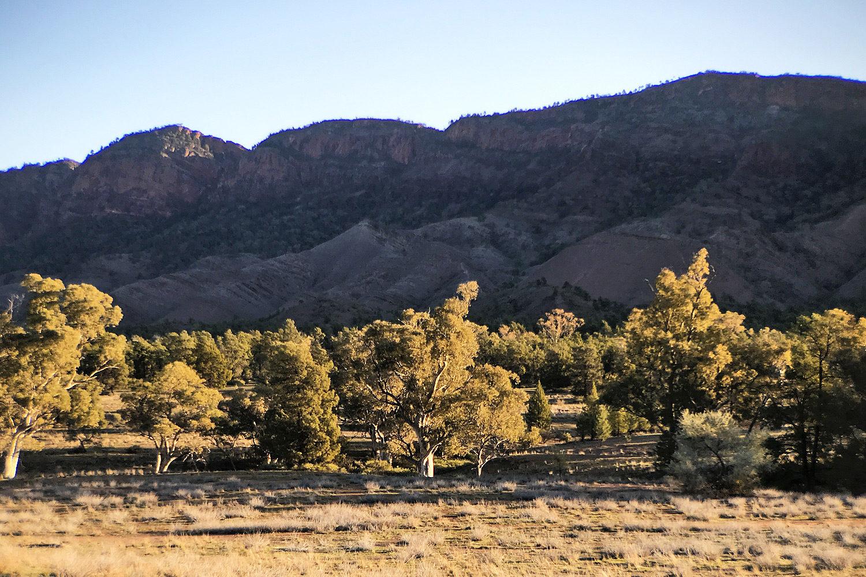 Day 1 – Parachilna Gorge to Aroona Campground Header
