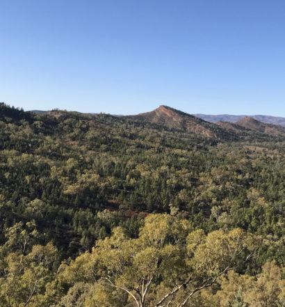 Day 2 - Aroona Campground to Yanyanna Hut
