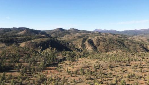 Day 3 – Yanyanna Hut to Wilpena Pound Resort