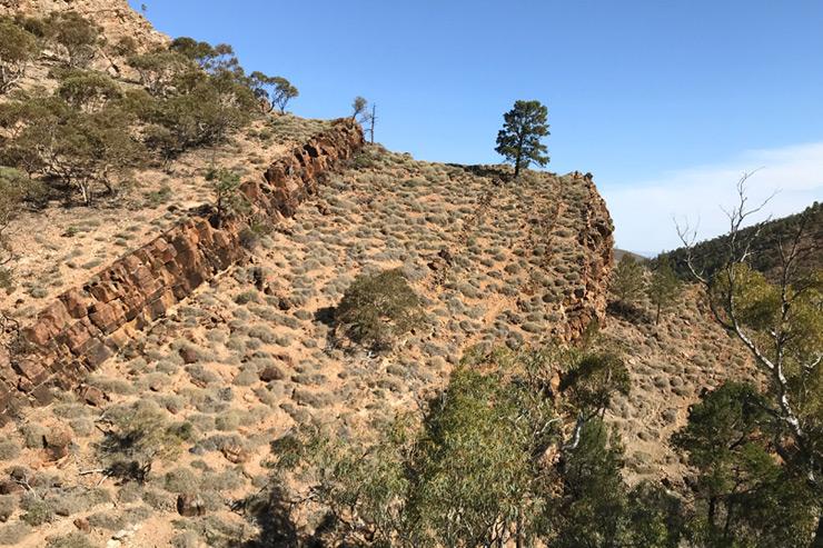 Day 10 - Arid bushland