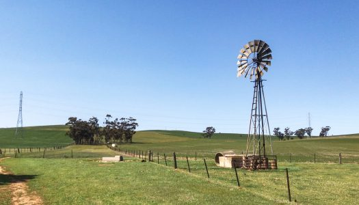 Day 28 – Whistling Trig Tank to Hallett Railway Station