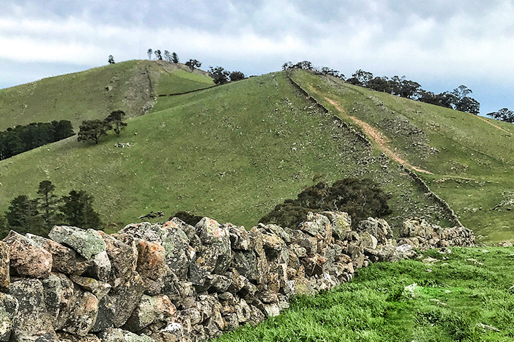 Climb to New Campbell Hill