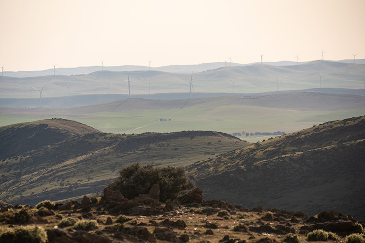 Mount Bryan View Windmills on the Heysen Trail
