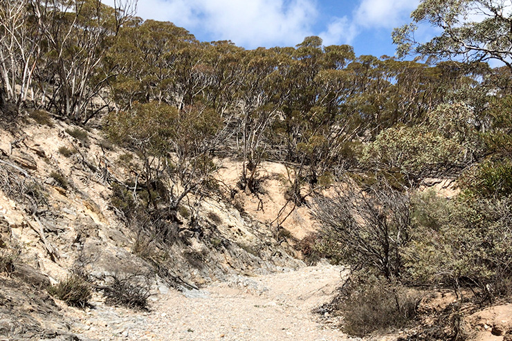 Worlds End Reserve Creek Heysen Trail
