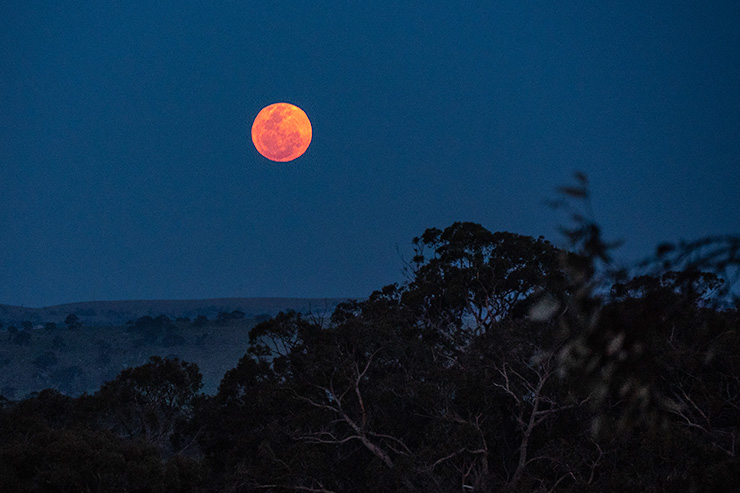 Kaiserstuhl Red Moon Heysen Trail