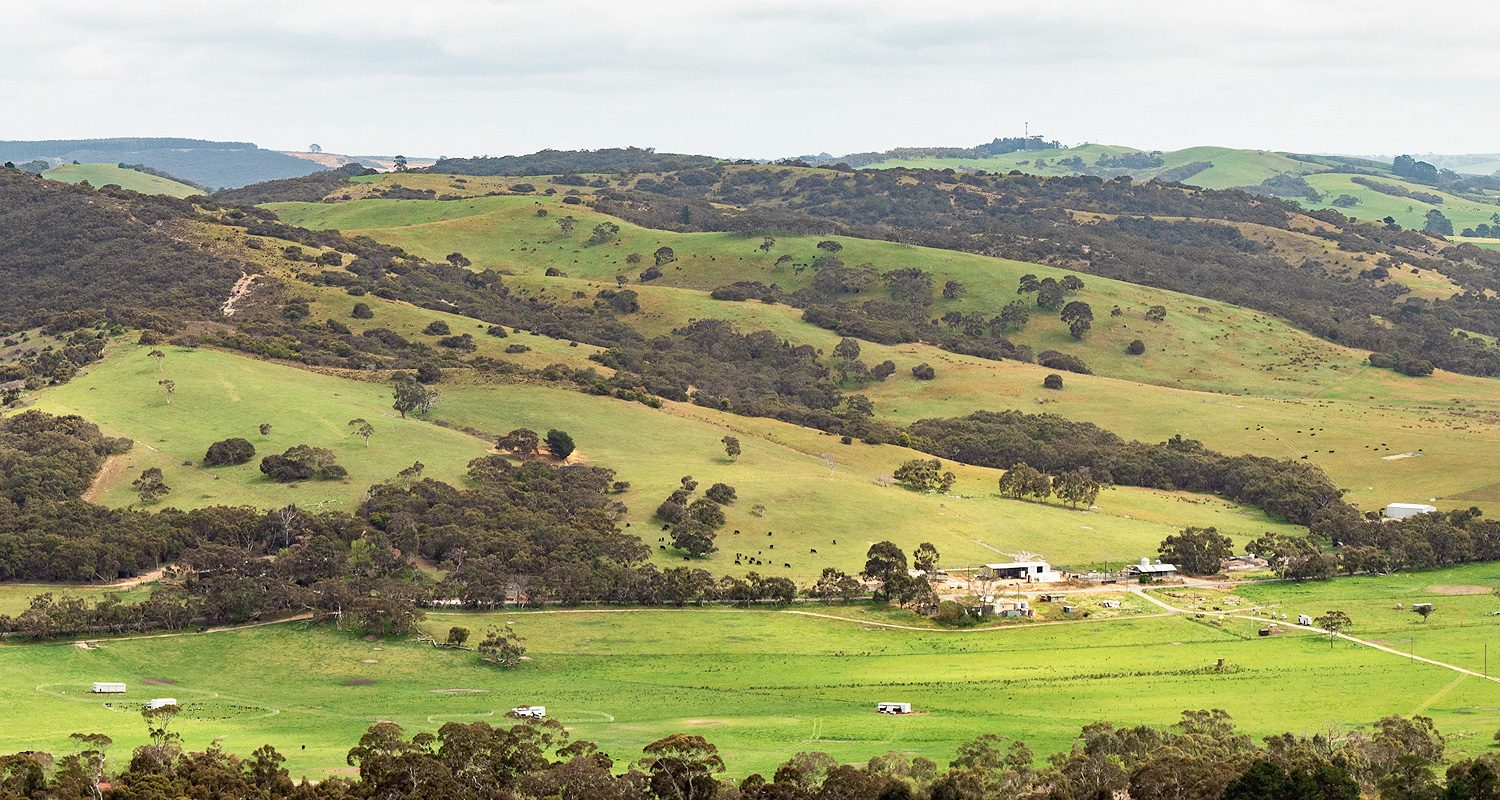 Mount Magnificent View Heysen Trail