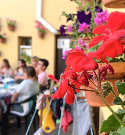 Bercianos Del Real Camino to Mansilla De Las Mulas Day 18