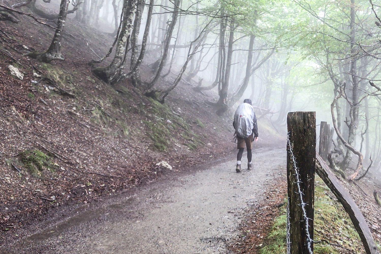 Camino Frances St-Jean-Pied-De-Port to Roncesvalles