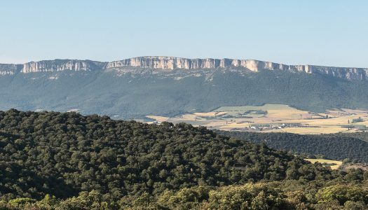 Day 6 – Estella to Los Arcos