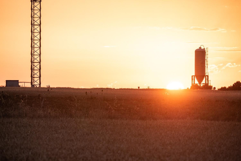 Bercianos Camino Wheat Fields